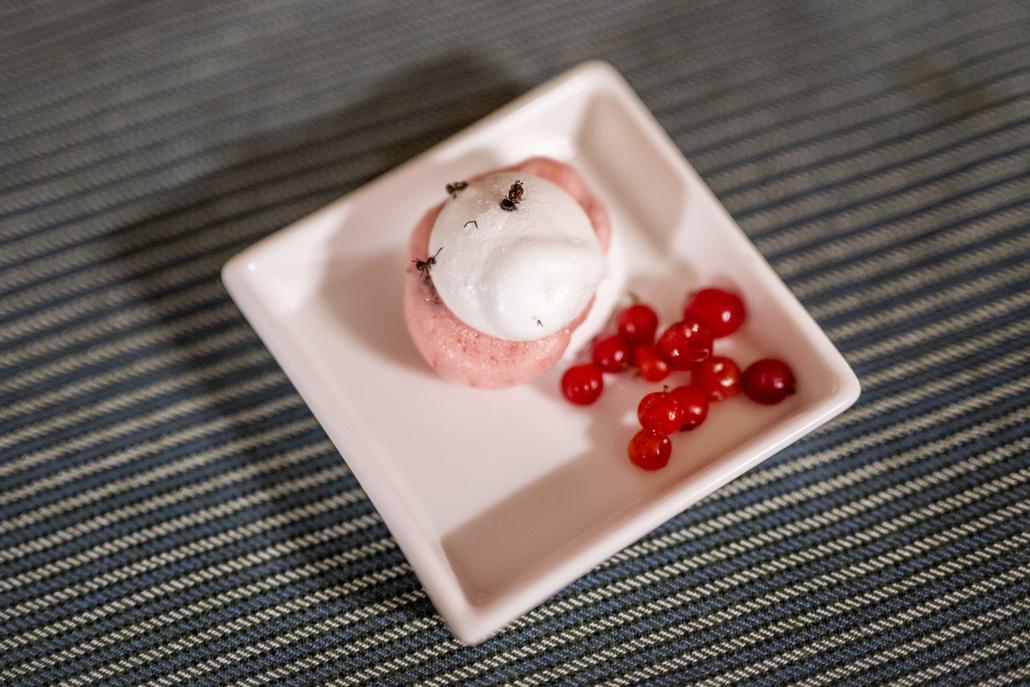Kveldens snakkis: Maurengs. Marengs med maur, trollkrem og tyttebær. Foto Jo Straube
